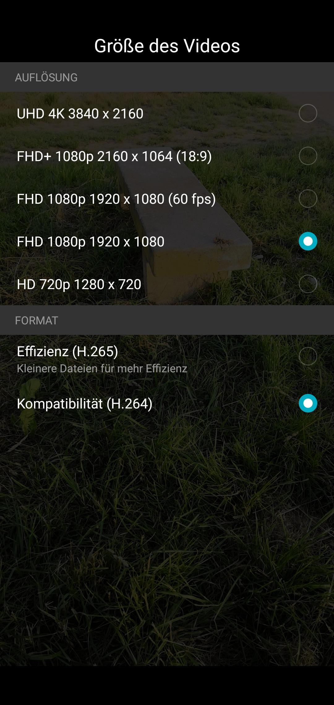 Honor 10 Testbericht Screenshot Kamera 5