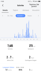 Amazfit_Watch_App_Schritte