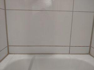 Phaewo Reinigungsbürste Fliese 1
