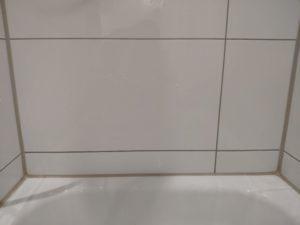 Phaewo Reinigungsbürste Fliese 2
